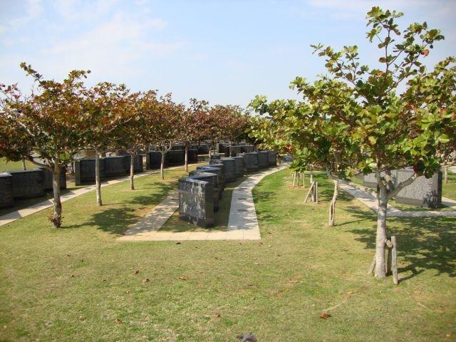 Japan Heroes Return Blog Stories From Second World War